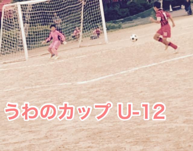 2019 うわのカップ U-12 惜敗